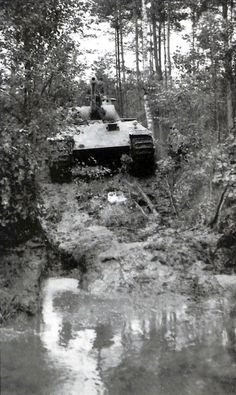 V Panther Tank Wallpaper, Patton Tank, Ww2 Pictures, Ww2 Tanks, German Army, Armored Vehicles, World War Two, Historical Photos, Wwii