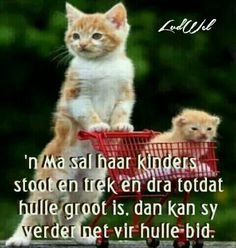 Christelike Boodskappies: 'n Ma Afrikaanse Quotes, Goeie Nag, Goeie More, Father's Day, Beautiful Prayers, Three Kids, Self Defense, True Words, Animals