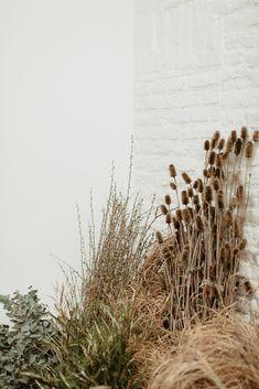 Workshop #1 L'Atelier Floral - Fleuriste spécialisée en mariages et wedding design en Alsace Alsace, Workshop, Herbs, Plants, Design, Atelier, Landscape Planner, Work Shop Garage