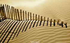 arena, playa, sombras, desierto, sand, sable, shadows, ombre Animal Print Rug, Garden Tools, Rugs, Decor, Sand Beach, Travel Photography, Wilderness, Shades, Fotografia