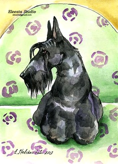 ORG Art Scottish Terrier Scottie Dog on The Chair Watercolor by ES | eBay