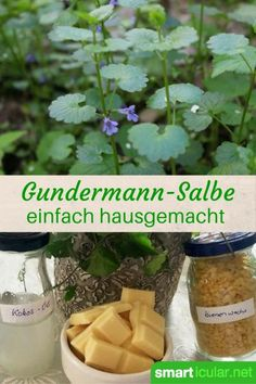 Gundermann-Heilsalbe für schlecht heilende Wunden Wound healing from the wayside. This recipe for wild herb ointment accelerates the cure of persistent inflammation and abscesses based on nature! Herbal Remedies, Home Remedies, Natural Remedies, Health Remedies, Diy Beauty Organizer, Diy Nature, Belleza Diy, Wound Healing, Natural Make Up