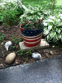 Miniature roses are perfect for this flag inspired pot