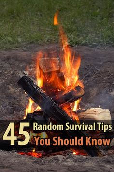 Although most of these survival tips have more to do with wilderness survival, they also apply to urban survival.