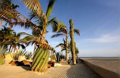 #oceanview #vacation #loscabos