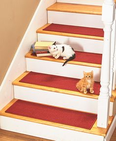 This Set of 4 Nonslip Stair Treads guards your steps against everyday wear and tear.