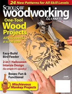 When you actually are hunting for excellent ideas on woodworking, then http://www.woodesigner.net can help!
