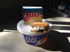 Mix a box of sugar free pudding ( I use white chocolate) into a tub of fat free cool whip  and spread a tablespoon onto on gram cracker and stick in freezer, and you have yourself a ice cream sandwich!  Yummy only 1 weight watcher point!