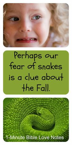 Have you ever wondered why so many people have an irrational fear of snakes? This 1-minute devotion suggests a possible reason.