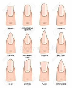 Illustration of Different nail shapes Fingernails fashion Trends vector art clipart and stock vectors. Image The post Illustration of Different nail shapes Fingernails fashion Trends vector art c appeared first on nageldesign. Summer Acrylic Nails, Best Acrylic Nails, Spring Nails, Squoval Acrylic Nails, Nail Shapes Squoval, Matte Nail Art, Fall Nails, Plain Acrylic Nails, Acrylic Nails Almond Short