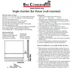 Bat house plan for your bat friend Many of the bats across the