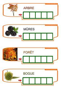Teaching French, Home Schooling, Autumn Theme, Montessori, Homeschool, Education, Mobiles, Nature, Art