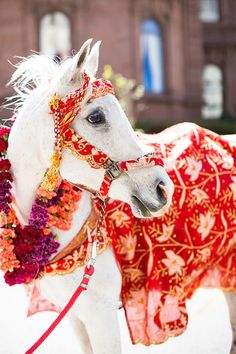 This Beautiful, Indian-American Wedding Is The Best Of Both Worlds. Horse flowers: www.nataliebowendesigns.com