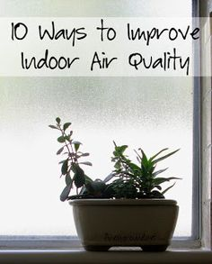 Finely Ground: 10 Ways to Breathe Easier