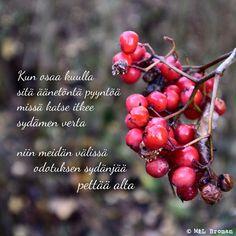 #runo #runokuva #runous #runoilija #valokuva #valokuvaus #suomeksi Poems, Thoughts, Poetry, Verses, Poem, Ideas