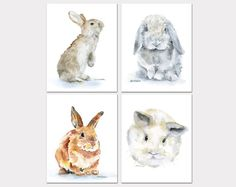 Bunny conejo acuarela animales grabados guardería por SusanWindsor