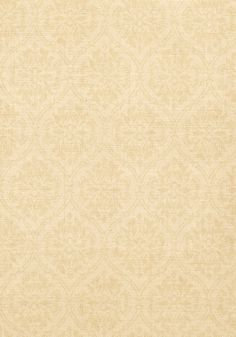 BANKUN DAMASK, Cream, T14117, Collection Texture Resource 4 from Thibaut
