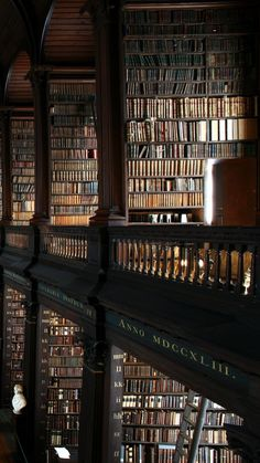 """Beautiful Libraries: """" The Long Room, Trinity College Dublin, Ireland. Beautiful Library, Dream Library, City Library, Photo Library, Book Aesthetic, Aesthetic Pictures, Old Libraries, Bookstores, Victorian Architecture"""