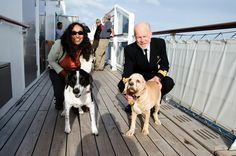 Queen Mary 2 Kennels: Frequently Asked Questions | The Road Unleashed - Pet Travel Blog