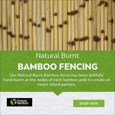 Bamboo Fencing, Bamboo Poles, Bamboo Shop, Bamboo Architecture, Tropical Style, Fence Panels, Galvanized Steel, Fences, Burns