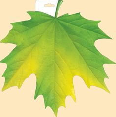 Maple Leaf Drawing, Tree Drawings Pencil, Copic Marker Art, Colouring Techniques, Cardboard Crafts, Leaf Flowers, Autumn Activities, Leaf Art, Colorful Drawings