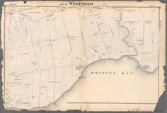 One of hundreds of thousands of free digital items from The New York Public Library. Staten Island New York, New York City Map, New York Public Library, Public Domain, Maps, Digital, Blue Prints, Map