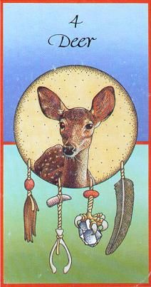 Native American Animal  Medicine Cards.