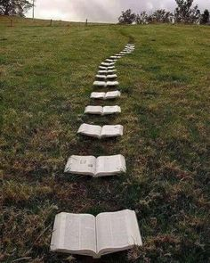 This would be great for a proposal to me knowin how much I love books. Even those these are bibles but I rather it be actual books and he highlights a quote from the book talking about love be great Bible Verses About Love, Essayist, Marriage Proposals, Wedding Proposals, Wedding Quotes, I Love Books, Belle Photo, Book Worms, Book Lovers