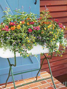 A bright punch of color makes a splash in this sensational planter that blooms from spring into fall. A 1-inch-deep layer of pea gravel in the bottom of the container facilitates drainage. A. Salvia farinacea 'Victoria Blue' B. Zinnia 'Profusion Orange'; 'Profusion Pink' C. Osteospermum 'Symphony' D. Sweet alyssum (Lobularia maritima) E. Sanvitalia F. Lobelia erinus 'Compact Blue'