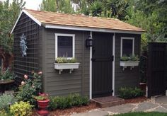 painted sheds - Google Search