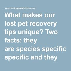 What makes our lost pet recovery tips unique? Two facts: they arespecies specificand they arebehavior specific.