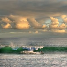 ☀ Puerto Rico ☀Morning surf in Puerto Rico