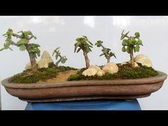 Oval shaped shallow Bonsai pot making with Polystyrene mold, Be the Creator, Mar-18. Diy Bonsai pot - YouTube