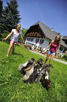 Haben Sie schon einmal versucht eine Ente zu fangen? Es ist gar nicht so einfach. #urlaubambauernhof #oberösterreich #salzkammergut #farmlife #bauernhof Mit Unterstützung von Bund, Ländern und Europäischer Union (LE 14-20) © Ralph Fischbacher