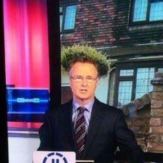 #news reader with #topiary #hair style