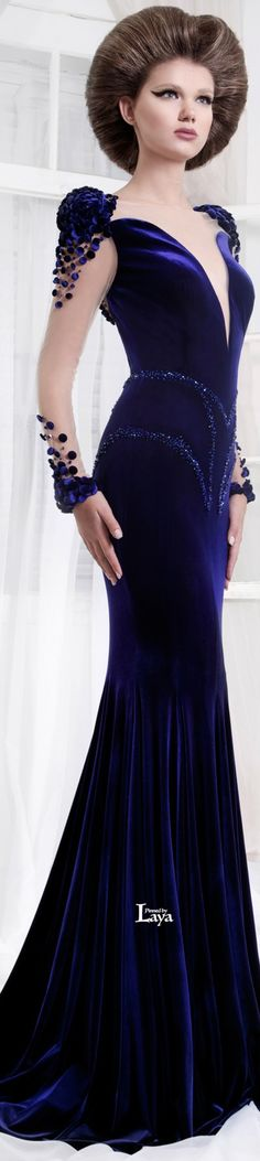 Azul Marino ~ Sheer Sleeve Mermaid Style Gown, Royal Purple, 2014