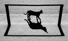 Mind-Bending Shadow Photos by Alexey Bednij - My Modern Metropolis