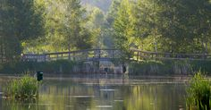Sackville Waterfowl Park   ... Geographic Photo Club - Sackville Waterfowl Park, Sackville, NB