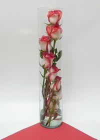 Arreglo Floral Espiral Cilindro, Cilindro de 50 cts. de largo que contiene rosas 100% de exportacion. a domicilio en Bogotá tienda Online. http://www.magentaflores.com/productos/arreglos-florales-bogota.html
