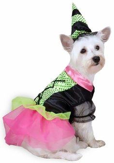 Zack & Zoey Witchy Business #Dog Costume features a black, hot pink, and lime green sequin bodice, and it comes in 5 sizes!