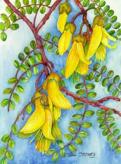The kowhai is a much loved New Zealand native shrub--also much loved by the birds. Nz Art, Belly Painting, Kiwiana, Small Canvas, Quilting Designs, Art Images, Flower Art, Flora, Projects To Try