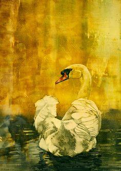 """""""Erased"""" Watercolors - Mary Blake Watercolors"""