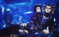 Cats Musical, Musical Theatre, Michael Gruber, Cats That Dont Shed, Jellicle Cats, Theater, Broadway, Angels, Films