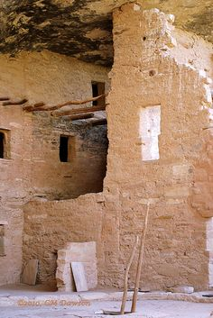 Spruce Tree House in Mesa Verde (Cortez, CO). Ancient Ruins, Ancient Art, Ancient Architecture, Art And Architecture, Places To Travel, Places To Go, Canyon Country, Spruce Tree, Fantasy Places