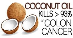 Even The Doctors Are Shocked: Coconut Oil Kills 93% Of Colon Cancer Cells In a Very Short Time - The House of Health