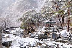 가야산 - 홍류동계곡(농산정의 겨울)( Gayasan National Park, Korea)