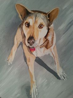 Pet portrait Custom Commission Dog painting Portrait artist