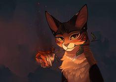 Burning rose by LokiDrawz on DeviantArt Warrior Cats Fan Art, Warrior Cats Series, Warrior Cats Books, Warrior Cat Drawings, Burning Rose, Gato Anime, Love Warriors, Vash, Cat Design
