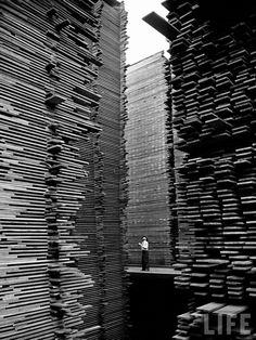 A man standing in the lumberyard of Seattle Cedar Lumber Manufacturing.    Photo taken by Alfred Eisenstaedt for Life Magazine, 1939.