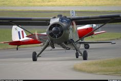 De Havilland Canada DHC-2 Beaver AL1 - UK - Army | Aviation Photo #0625573 | Airliners.net